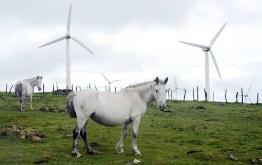 Aereogeneradores en Galicia. Soria se comería los caballos.