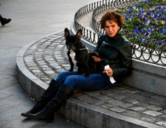 Señora con perrito, 2014