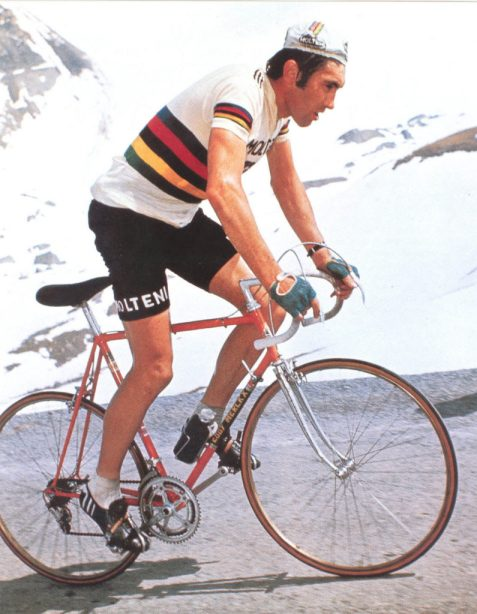 eddy-merckx-world-champion-795x1024