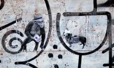 Primates II
